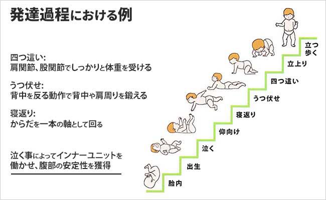 発達過程のイメージ図
